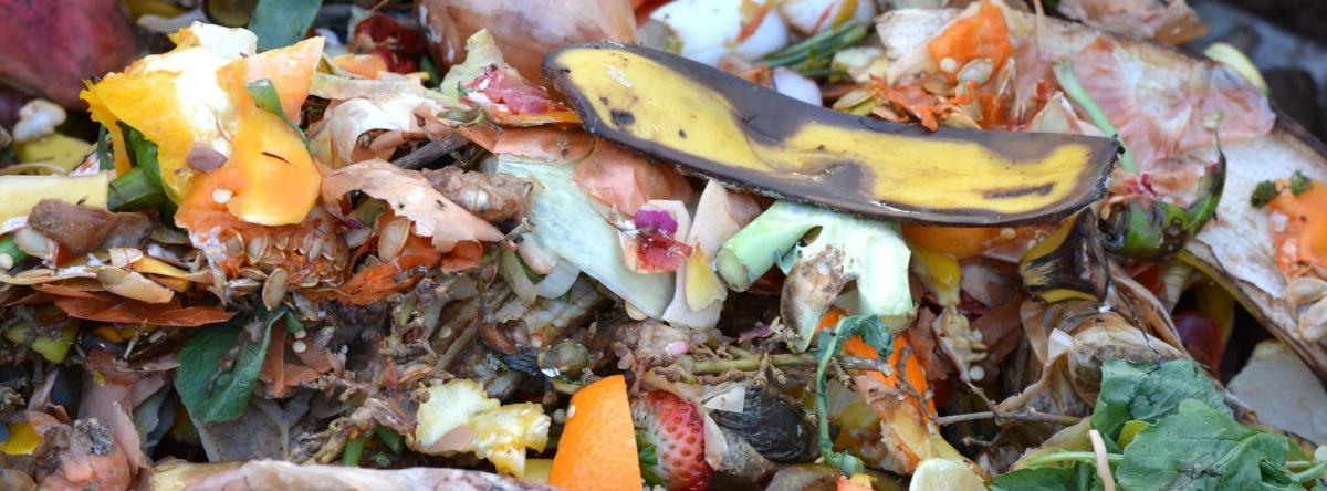 Desperdício de Alimentos: números impressionantes para você mudaragora