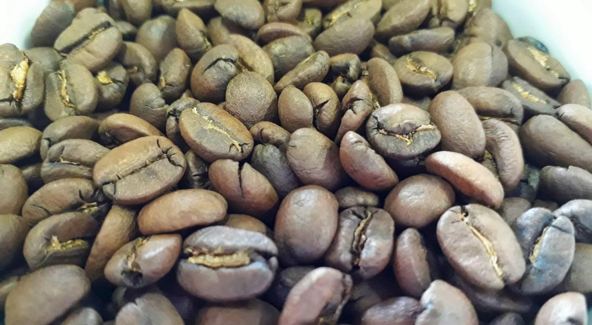 Novos cafés e rumos: a nova geração cafeeira doBrasil
